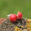 Piros színű kerámia pöttyfüli, Ékszer, Fülbevaló, Kézzel készített kerámia fülbevaló, piros mázzal. Nikkel és rozsdamentes acélbedugóval. Kb..., Meska