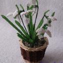 Hóvirág, Dekoráció, Otthon, lakberendezés, Dísz, A virágokat 4,5 cm magas és 6 cm széles kis kosárba ültettem. A dísz 6 szál hóvirágból és..., Meska