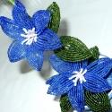 Clematis, Kék színben fűzött futónövény.  A virág sz...