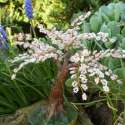 Cseresznye fa virágzás, Szakura fa gyöngyből . 14 cm magas 15 cm széles...