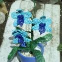 Lepke orchidea türkiz színben 2, Egy újabb változata a türkiz lepke orchideának...