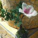 Sziklára épített virág ., kása gyöngyből és drótból készült . a szik...