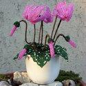 Ciklámen gyöngyből, A kedvenc virágom :) Imádom ,de sajnos sosem mar...