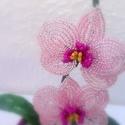 Lepke orchidea rózsaszín., Dekoráció, Otthon, lakberendezés, Dísz, Rendelhető ! Gyöngyből és drótból készült kis lepke orchidea. Gipsszel van rögzítve .  Mag..., Meska