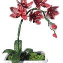 Csónak orchidea , Dekoráció, Otthon, lakberendezés, Dísz, Asztaldísz, Gyöngyfűzés, Időtálló ajándék, mely mindig virágba borulva pompázik. 5 virág, két bimbó és 4 levél alkotja. Külö..., Meska
