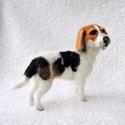 Kutya hasonmás - egyedi beagle keverék, Képzőművészet, Dekoráció, Szobor, Dísz, Egy hasonmás kutya minden gazdi számára tökéletes meglepetés. Fénykép alapján dolgozom, egyedi megre..., Meska