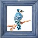 Kék szajkó - Mini-kép színes fa képkerettel, Otthon & Lakás, Dekoráció, Kép & Falikép, Fotó, grafika, rajz, illusztráció, Kék szajkót ábrázoló mini-kép: 9 színből választható színes fa díszképkerettel, az eredeti (színes ..., Meska
