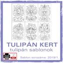 TulipánKert 2019/1