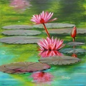 Water lily - 50 x 50 centis olajfestmény, Képzőművészet, Festmény, Olajfestmény, 50 x 50 centis olajfestmény feszített vásznon, keret nélkül. A festmény már szerepelt kiállításon. E..., Meska