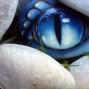 kék Sárkányszem kavics, Képzőművészet, Otthon, lakberendezés, Dekoráció, Kerti dísz, Ez a kavics felvidítja a napodat!  Sárkányszem - Kézzel festett egyedi kavics. Anyag: mészkő Festék:..., Meska