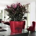 Afrika virágcserép, Képzőművészet, Otthon, lakberendezés, Kerti dísz, Kaspó, virágtartó, váza, korsó, cserép, Egyedi készítésű natúr virágcserép akrillal festve.  Víz-, hő-, és fényálló a cserép, ..., Meska