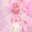 Rózsaszín, Képzőművészet, Fotográfia, Fotó, grafika, rajz, illusztráció, Egy igazi lányszoba falára ajánlom.  30x45-ös méretben selyemfényű matt fotópapírra vagy vászonképr..., Meska