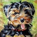kutya portré Shih-Tzu , Dekoráció, Otthon, lakberendezés, Állatfelszerelések, Kutyafelszerelés, Ez a kedves kutya portré, pasztell krétával készült.  Paszpartú-val 26*30 cm nélküle a kép méret: 27..., Meska