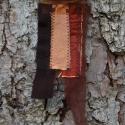 Textil nyaklánc-medál - barna-narancs gyöngyház                      , Ékszer, Medál, Nyaklánc, Barna színű textil nyaklánc különböző anyagkombinációkkal. Medál mérete kb. 4,5x14cm. Vil..., Meska
