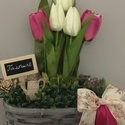 Tulipános láda ciklámen, Dekoráció, Otthon, lakberendezés, Asztaldísz, Tulipános asztaldísz., Meska