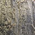 Fa kérge - dekorfal, Dekoráció, Otthon, lakberendezés, Kép, Falikép, Egy 70 x 70 cm -es táblára  odavarázsoltam az erdő aranyló fa kérgét dekor glett és különb..., Meska