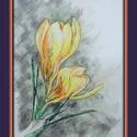 Sárga krókusz, Képzőművészet, Festmény, Akvarell, 17X12 cm-es kis akvarell. (A keret virtuális.), Meska