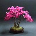 Pink gyöngyfa, Dekoráció, Otthon, lakberendezés, Képzőművészet, Dísz, Láttam bougainvillea bokrokat, egészen valószínűtlen színeik vannak...mint neki. 20 cm magas, cserép..., Meska