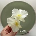 Dupla orchideás fejdísz, Két csodaszép selyemorchideával készült kroko...