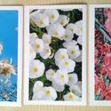 3db kinyitható képeslap saját fotókkal - Tavaszi virágok, Képzőművészet, Naptár, képeslap, album, Fotográfia, Képeslap, levélpapír, Fotó, grafika, rajz, illusztráció, Papírművészet, Mandula, japánbirs és aprószulák. Saját fotóimat ragasztottam fényes, fehér kartonra, így lett belő..., Meska
