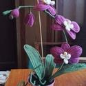 Horgolt orchidea, Otthon, lakberendezés, Kaspó, virágtartó, váza, korsó, cserép, Horgolás, A horgolt orchidea tökéletes dísze lehet bármely lakásnak. Olyan hölgyeknek is ajánlott, akik szere..., Meska