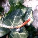 Róka nyakék, lánc, Ékszer, Nyaklánc, 925-ös sterling ezüst antikolt rókafej csiszolt( fazettált), fűzött karneollal + ezüst lánc., Meska