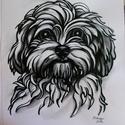 """,,Bodri"""" kutyus portré A4-es méret , Képzőművészet, Grafika, Rajz, Illusztráció, Festészet, Fotó, grafika, rajz, illusztráció, Ezt a kedves, vicces kutyus portrét fotó alapján készítettem, filctollal, és vizes ecsettel árnyalt..., Meska"""