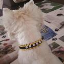 Neves kutya nyakörv, Ruha, divat, cipő, Állatfelszerelések, Baba-mama-gyerek, Kutyafelszerelés, Csomózás, Ékszerkészítés, Paracord zsinórból készült egyedi kutya nyakörv, melyre ráírom kedvenced nevét. Nagyon erős zsinór,..., Meska
