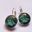 Zöld Pitypang üveglapos fülbevaló, Ékszer, óra, Fülbevaló, A fülbevaló 16 mm-es üveglappal készült egy kedvelt mintával, szemetgyönyörködtető, nyugtató zöld sz..., Meska