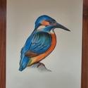 Jégmadár színes grafika, Művészet, Grafika & Illusztráció, Fotó, grafika, rajz, illusztráció, Imádok színes tollazattal rendelkező madarakat festeni, rajzolni. Egyik kedvenc alanyom a jégmadár,..., Meska