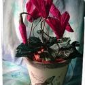 Ciklámen háncs kaspóban, Dekoráció, Virágkötés, Papírművészet, Minőségi olasz virágkreppből készítettem pillangós mintával díszített háncs kaspóba egy bokor ciklá..., Meska