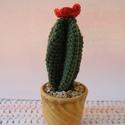 Horgolt virágzó kaktusz - örök virág, Dekoráció, Dísz, Csokor, Horgolt virágzó kaktusz - örök virág  Horgolással készítettem ezt a kb: 10 cm nagyságú virágzó kaktu..., Meska
