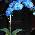 Cserepes orchidea harisnyavirág , Dekoráció, Szerelmeseknek, Ballagás, Dísz, Mindenmás, Szeretettel köszöntelek!  Harisnyából készült cserepes orchidea! Tartós, egyedi ajándék névnapra, s..., Meska