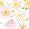 """Akvarell Rózsaszín pipacs csokor - art print (akvarell festményem alapján), Képzőművészet, Otthon, lakberendezés, Festmény, Akvarell, Akvarell Rózsaszín pipacs csokor - art print (akvarell festményem alapján) """"Pipacs csokor"""" rózsaszín..., Meska"""