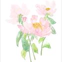 Rózsaszín peóniák akvarell - A5 art print, Képzőművészet, Illusztráció, Festmény, Akvarell, Rózsaszín peóniák akvarell - A5 art print (akvarell festményem alapján)  Méret: 14,8 x21 cm (A5)  Sz..., Meska