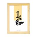 Botanikai képek kerettel! Mustár növényről készült modern, letisztult, minimalista nyomat kerettel,A4-es méretben, Otthon, lakberendezés, Baba-mama-gyerek, Falikép, Gyerekszoba, Botanikai témájú képek.  Mustár növény modern, letisztult, minimalista ábrázolásban. Kézi rajzomról ..., Meska