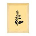 Botanikai képek kerettel! Mustár növényről készült modern, letisztult, minimalista nyomat kerettel,A4-es méretben, Otthon, lakberendezés, Baba-mama-gyerek, Falikép, Gyerekszoba, Botanikai témájú falikép sorozat gyönyörű, finom pasztell színárnyalatokkal. Mustár növény modern, l..., Meska
