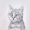 Állat portré rajzolás A/4-es méretben képzőművészeti szinten , Dekoráció, Képzőművészet, Grafika, Rajz, Fotó, grafika, rajz, illusztráció, Élethű, realista, képzőművészeti portrék készítését vállalom rövid időn belül! Egy portré rajz mind..., Meska