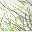 Polcseprés:) Fű, Képzőművészet, Dekoráció, Grafika, Rajz, Festészet, Fotó, grafika, rajz, illusztráció, pasztell rajz 30x21 cm, Meska