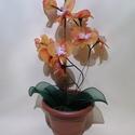 Pyxis 19, Otthon & Lakás, Dekoráció, Csokor & Virágdísz, Virágkötés, Pyxis 19   2 ágú Orhidea harisnyavirág eladó! Narancssárga és fehér színeivel figyelemfelkeltő lehe..., Meska