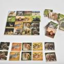 Memória és szortírozó játék - vadon élő állatokkal, Játék, Baba-mama-gyerek, Készségfejlesztő játék, Társasjáték, Decoupage, szalvétatechnika, Fából és papírból készült memória és szortírozó játék egyben.  Tartozékai:  - 1 db 20*20 cm-es fala..., Meska