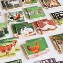 Memóriajáték - háziállatokkal, Játék, Baba-mama-gyerek, Készségfejlesztő játék, Logikai játék, Decoupage, szalvétatechnika, 32 db 5*5 cm-es falapokra ragasztott színes papírlap.  Bármely témakörben lehetséges memóriajáték k..., Meska