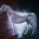Lipicai Akril festmény, Képzőművészet, Illusztráció, Festmény, Akril, 75x58-as vászonra készült akril festmény, amely egy Lipicai lovat ábrázol. , Meska