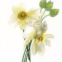 Lótusz virágcsokor - art print (akvarell festményem alapján), Képzőművészet, Otthon, lakberendezés, Illusztráció, Festmény, Lótusz virágcsokor - art print (akvarell festményem alapján)  Méret: 21 x 29,7 cm (A4)  Szépséges fe..., Meska