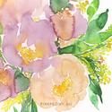 Peónia virágcsokor - art print (akvarell festményem alapján), Képzőművészet, Otthon, lakberendezés, Csokor, Illusztráció, Peónia virágcsokor - art print (akvarell festményem alapján)  Méret: 21 x 29,7 cm (A4)  Szépségesróz..., Meska