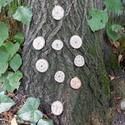 Viking medál, Dekoráció, Ékszer, Dísz, Medál, Skandináv rúnákkal díszített faág-szeletből készült medál.  Jelenleg készleten lévők: - Aegisjalmur ..., Meska