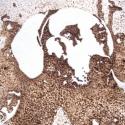 """""""Vizsla portré"""" - hőrajz merített papíron, Dekoráció, Képzőművészet, Kép, Grafika, Fotó, grafika, rajz, illusztráció, Portré egy vizsláról. A papír alapszíne, a hő által létrejött számtalan barna árnyalat egyedi hangu..., Meska"""