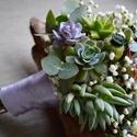 Esküvői csokor pozsgásokból, Otthon, lakberendezés, Esküvő, Esküvői csokor, Virágkötés, Ez az egyedi esküvői csokor pozsgás növények, eukaliptusz, díszmák és fátyolvirág felhasználásával ..., Meska