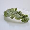 Hajdísz, Esküvő, Ékszer, Esküvői ékszer, Műanyag hajfésűt díszítettem pozsgás növényekkel.  Esküvőkre, különleges alkalmakra ajá..., Meska