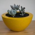 Timmy, Dekoráció, Otthon, lakberendezés, Dísz, Asztaldísz, Mindenmás, Egyedi, kézzel készült festett kaspó pozsgás növények számára. (a képen látható növényt ajándékba a..., Meska